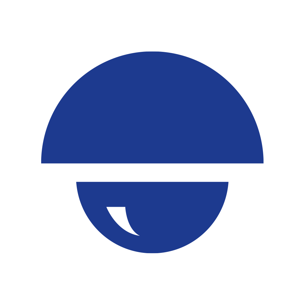 Icon_Set_Cameras_Blue